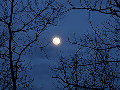 """Moon"" by beccapuglisi/WANA Commons"